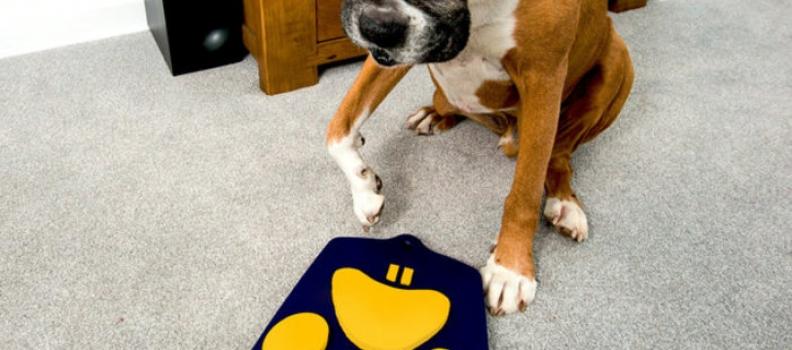 Έρχεται το πρώτο σκυλο-τηλεκοντρόλ